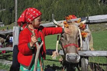 festa dei pastori